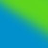 Teal/Lime